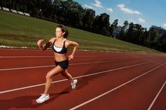 biegacz Obraz Stock