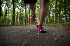 biegacz Zdjęcie Royalty Free