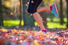 Biegacz iść na piechotę outside podczas jesień dnia obraz stock