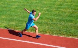 Biegacz skupiający się na rezultacie Krótki dystansowy bieg wyzwanie Zwiększenie prędkość Atleta bieg śladu trawy tło Biega w zdjęcie royalty free