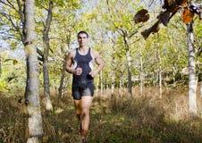 Biegacz w drzewach Zdjęcia Stock