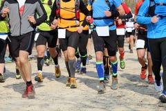 Biegacza bieg podczas konkurencyjnej rasy w wydarzeniu sportowym Obraz Stock