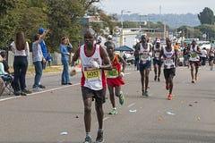 Biegacze Uczestniczy w kompanach Maratońskich w Południowa Afryka zdjęcia royalty free