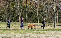 Biegacze Z Ich psami obraz stock