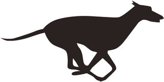 biegnij psa Zdjęcie Stock