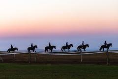 Biegowych koni fornalów dżokeje Trenuje świt Fotografia Stock