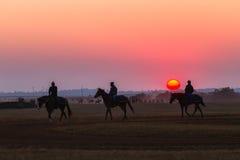 Biegowych koni fornalów dżokeje Trenuje świt Zdjęcie Royalty Free