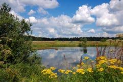 Biegung des Flusses im Wald, Nebel, Sommer, Lizenzfreie Stockbilder