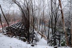 Biei蓝色池塘的冬天森林 库存图片