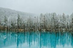 Biei蓝色池塘 库存照片