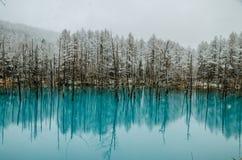 Biei蓝色池塘 图库摄影