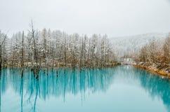Biei蓝色池塘 免版税图库摄影