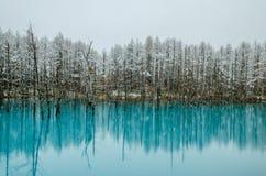 Biei蓝色池塘 库存图片