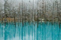 Biei蓝色池塘 免版税库存照片