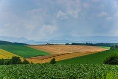 BIei agriculture area Stock Images