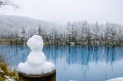 Biei Błękitny staw, hokkaido, Japonia zdjęcie royalty free