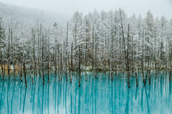 Biei-Blau-Teich Stockbilder
