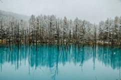 Biei Blue Pond. Beautiful view of Biei Blue Pond during winter Stock Photography