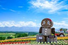 BIEI, JAPÓN Imagen de archivo libre de regalías