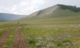 Biek que visita em Mongólia do norte Imagem de Stock