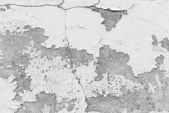 Biel ściana, biel ściana z pęknięciami dla tła Zdjęcie Royalty Free