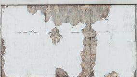 Biel ściana, odłupany i marniejący z nieosłoniętymi brown punktami obraz royalty free