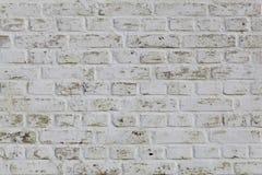 Biel ścienna tekstura ceglanej budowy przygotowania biel Zdjęcie Royalty Free