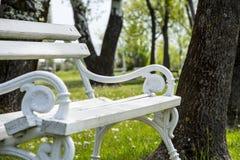 Biel żelazna parkowa ławka Zdjęcia Stock
