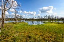 Biel chmurnieje na niebieskim niebie nad lasowym jeziorem Obrazy Royalty Free