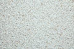 Biel cyzelująca ściana - marmur obraz royalty free