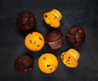 Biel i Brown Muffins Zdjęcia Stock
