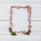 Biel karta dekorująca z różowymi kwiatami zdjęcie stock