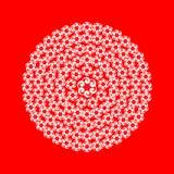 Biel koronki kwiat na czerwieni Obrazy Stock