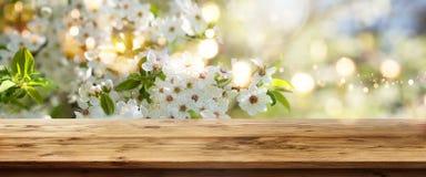 Biel kwitnie w wiośnie z drewnianym stołem Obraz Stock