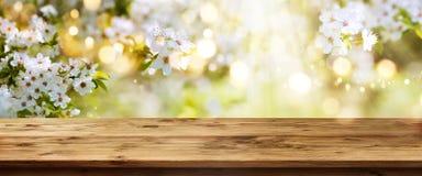 Biel kwitnie w wiośnie z drewnianym stołem Zdjęcia Royalty Free