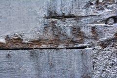 Biel malował drewno z mnóstwo szczegółem w teksturze obraz royalty free