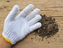 Biel ogrodowe rękawiczki a z ziemią Fotografia Stock