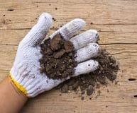 Biel ogrodowe rękawiczki a z ziemią Obrazy Stock