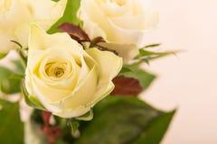 Biel róża w bukieta koloru żółtego róży Bukiet róże Obrazy Royalty Free