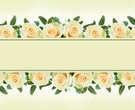 Biel róży kwiatów granicy Obrazy Stock