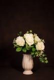 Biel róży kwiat w garnku Fotografia Royalty Free