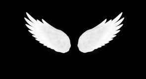 Biel skrzydła Zdjęcie Royalty Free