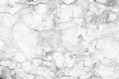 Biel tekstury marmurowa ściana dla projekta Wzór dla tła Fotografia Stock