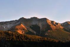 从Biele plesa,高Tatras,斯洛伐克的看法 免版税库存照片