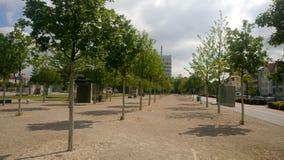 Bielefeld Kesselbrink drzewa Zdjęcie Royalty Free