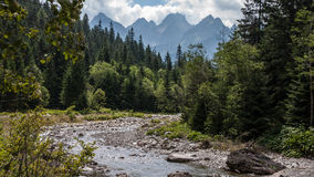 Bielovodska Valley in Tatry Mountains Royalty Free Stock Photo