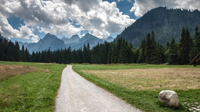 Bielovodska Valley in Tatry Mountains Royalty Free Stock Photography