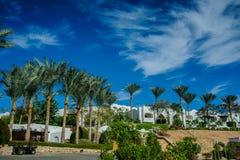 Bielu dom na czerwonym morzu Zdjęcia Royalty Free