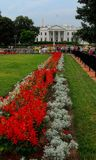 Bielu Domowy Waszyngtoński usa obrazy royalty free