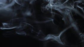 Bielu dym na czarnym tle, dymny tło, abstrakta dym na czarnym tle zdjęcie wideo